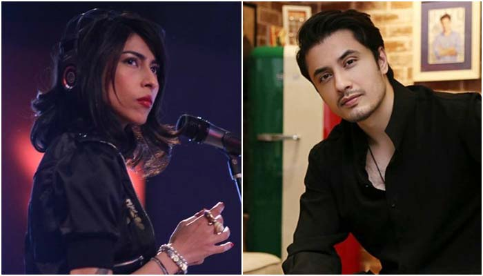 Meesha Shafi to appear in next hearing